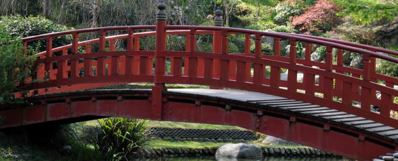 bridge-therapy-san-diego-72